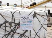 COVAX lần đầu chỉ phân bổ vaccine COVID-19 cho các nước có tỉ lệ phủ thấp nhất