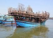 Cứu 49 người gặp nạn trên vùng biển Hoàng Sa