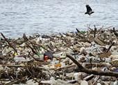 Malaysia chuẩn bị trả lại 450 tấn rác cho hàng loạt nước