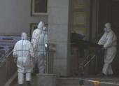 Virus Vũ Hán: Mỹ có người nhiễm, vội vàng nghiên cứu vaccine