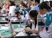 Chương trình giáo dục phổ thông mới: Giảm số môn học