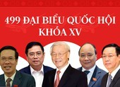 Infographic: Chân dung 499 đại biểu Quốc hội khóa XV