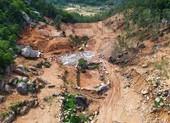 Bà Rịa- Vũng Tàu khởi tố vụ án hủy hoại rừng ở núi Thị Vải