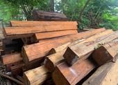 Phát hiện hàng trăm khúc gỗ trong một xưởng ở Gia Lai