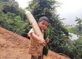 Người dân Trà My hái gần 10 tấn rau rừng gửi vùng dịch Đà Nẵng