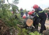 Bão số 5 gây thiệt hại nặng cho miền Trung