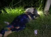 Tài xế gọi về nhà báo gây tai nạn chết 2 người rồi bỏ trốn