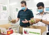 Nông sản Việt bán sang Mỹ vượt Trung Quốc
