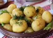Chế độ ăn kiêng giảm cân: Có nên tránh khoai tây?