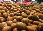 10 loại trái cây chứa hàm lượng protein rất tốt cho sức khỏe