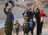 Liên Hiệp Quốc cảnh báo: 'Không nơi nào an toàn ở Idlib'