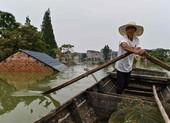 Lý do lũ lụt ở Trung Quốc năm nay nghiêm trọng