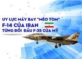 Uy lực máy bay Mèo F-14 của Iran từng đối đầu F-35 của Mỹ