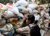 Mỹ trừng phạt 2 doanh nghiệp nhà nước gỗ, ngọc trai Myanmar