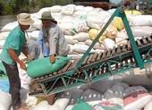 Bộ Công Thương lý giải đề xuất tạm dừng xuất khẩu gạo