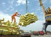Thủ tướng yêu cầu tháo gỡ khó khăn cho xuất khẩu gạo