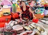 Kiên Giang: Ngang nhiên bán động vật quý hiếm giữa chợ