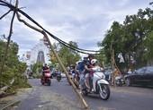 Thành phố Huế ngổn ngang cây đổ sau khi bão quét qua
