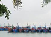 Các tỉnh Nam Trung Bộ khẩn cấp ứng phó với đợt mưa lớn