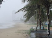 Đà Nẵng họp khẩn ứng phó bão số 6, lên phương án sơ tán dân