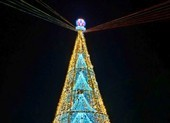 Ngắm cây Giáng sinh 11 m thông minh do sinh viên thiết kế