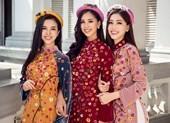 Top 3 Hoa Hậu Việt Nam hóa nàng xuân trong bộ ảnh Tết