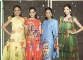 Á hậu Thùy Dung đọ dáng với hoa hậu H'Hen Niê, Khánh Vân