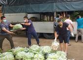 Cục An ninh Nội địa tặng 2 tấn gạo và 4 tấn rau củ cho bệnh viện dã chiến