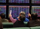 Nhà đầu tư cá nhân tăng thần tốc, công ty chứng khoán lời khủng