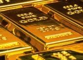 Nhà đầu tư lạnh nhạt, giá vàng giảm mạnh còn 48,3 triệu đồng