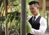 Đức Tuấn giới thiệu nhạc Trịnh Công Sơn nhân dịp 80 năm