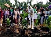 Trồng 30.000 cây xanh góp phần 'Phủ xanh Việt Nam'