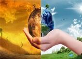 Làm sao để giảm thiểu trình trạng biến đổi khí hậu?