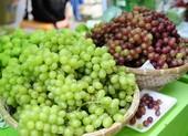 Loại trái cây rất tốt cho sức khỏe tim mạch