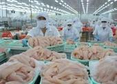 Bán qua Alibaba, cá tra Việt 'tấn công' Bắc Kinh, Thượng Hải