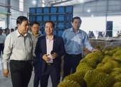 'Vua' bán trái cây sang Mỹ giải cứu thanh long