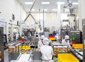 Vedan tố Trung Quốc bán phá giá bột ngọt