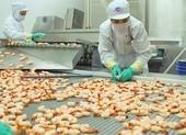 Bất chấp dịch, người Mỹ chi hơn 300 triệu USD để 'ăn' tôm VN