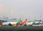 Các hãng hàng không khai thác trở lại đường bay nội địa