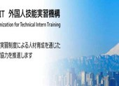 2 công ty Việt đưa thực tập sinh sang Nhật có thể bị xóa tên