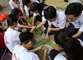 Học sinh Trưng Vương gói bánh chưng tặng trẻ em mồ côi