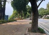 Chùm ảnh: Hà Nội vắng vẻ sau khi siết chặt giãn cách xã hội