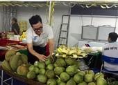 Đại gia Thái Lan đưa dừa Bến Tre sang Đài Loan