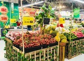 VinMart cam kết thu mua 2.000 tấn và bán vải thiều trên sàn Lazada