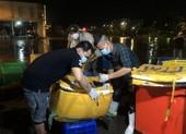 Đêm nay có 150 tấn rau, thịt, cá về điểm tập kết chợ Bình Điền