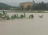 Quốc lộ 1 qua Quảng Ngãi chia cắt, nhiều nơi ngập sâu