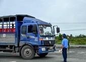 Cà Mau: Xe vận tải 'đứng bánh' vì vướng khâu xuống hàng