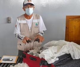 Nhét 185 con rùa hiếm giống khổng lồ thuộc sách đỏ trong vali
