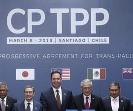 Nước đầu tiên lên tiếng ủng hộ đơn gia nhập CPTPP của Đài Loan