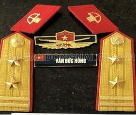 Đồng Nai: Giả danh Trung tá bộ đội đặc công để 'thông chốt' kiểm dịch